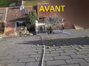 Démoussage de toiture Nord-Pas-de-Calais Picardie
